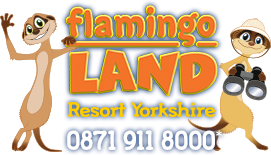 Flamingo Land voucher